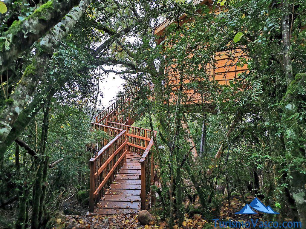 casa en el bosque, Cabañas en los árboles en el Pirineo Navarro