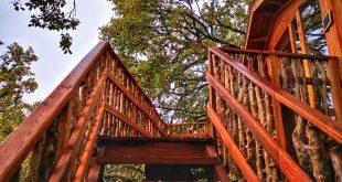 entrada, Cabañas en los árboles en el Pirineo Navarro