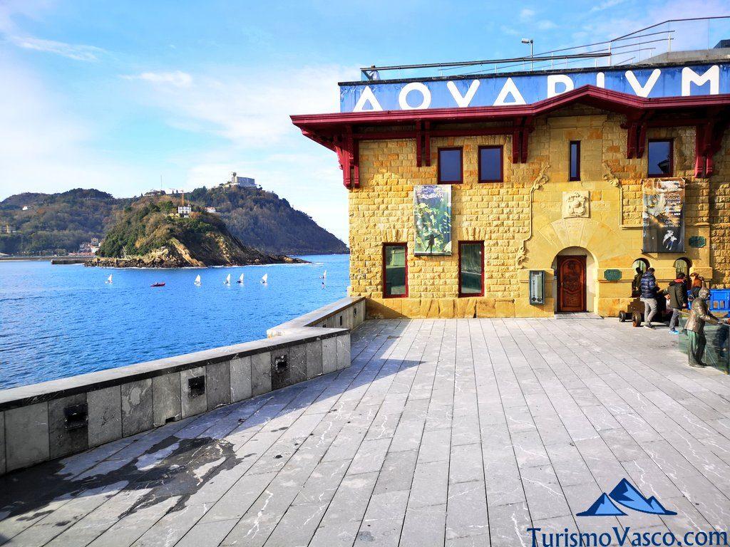 aquarium, que ver en Donostia San Sebastian
