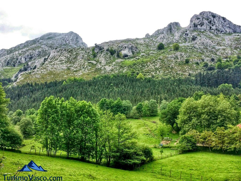 montes abadiño alluitz natura