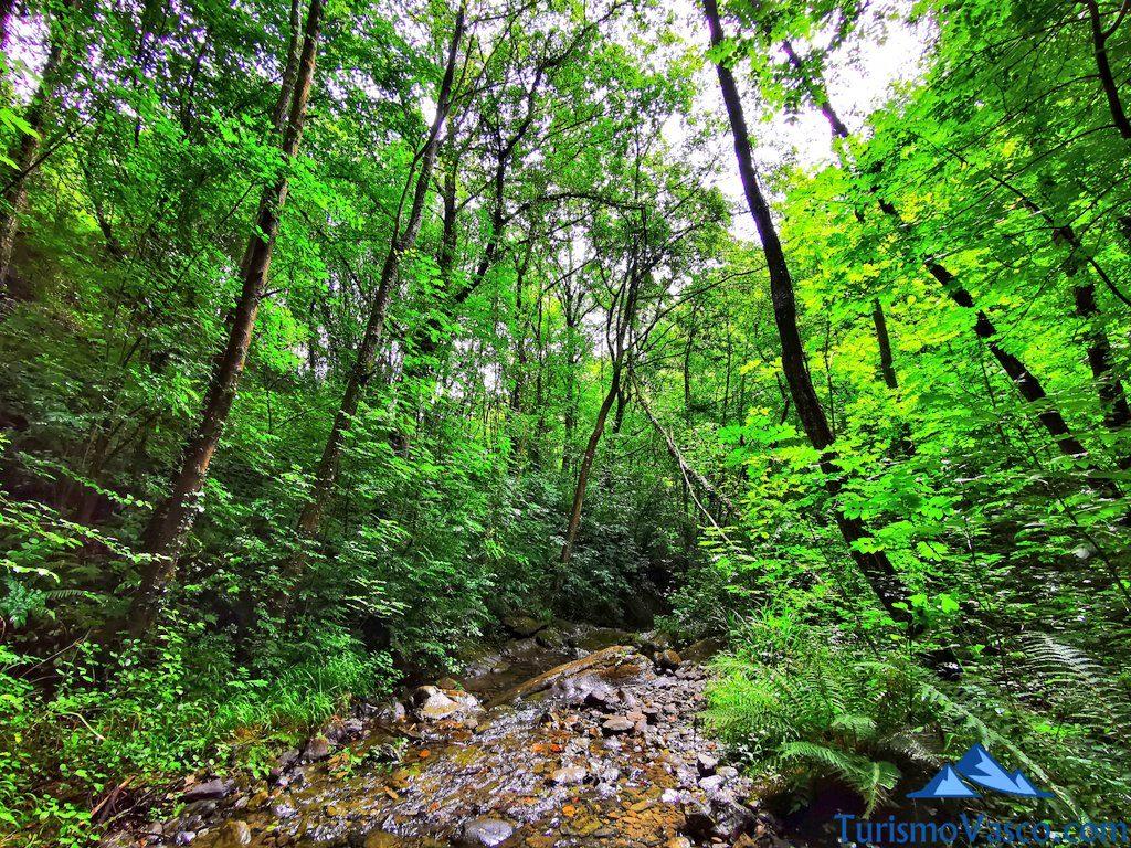 cauce del rio bolintxu, Bolintxu ruta cascada