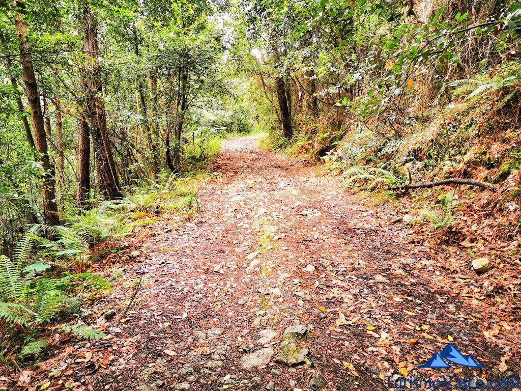 recorrido, San Pedro Atxarre ruta Urdaibai