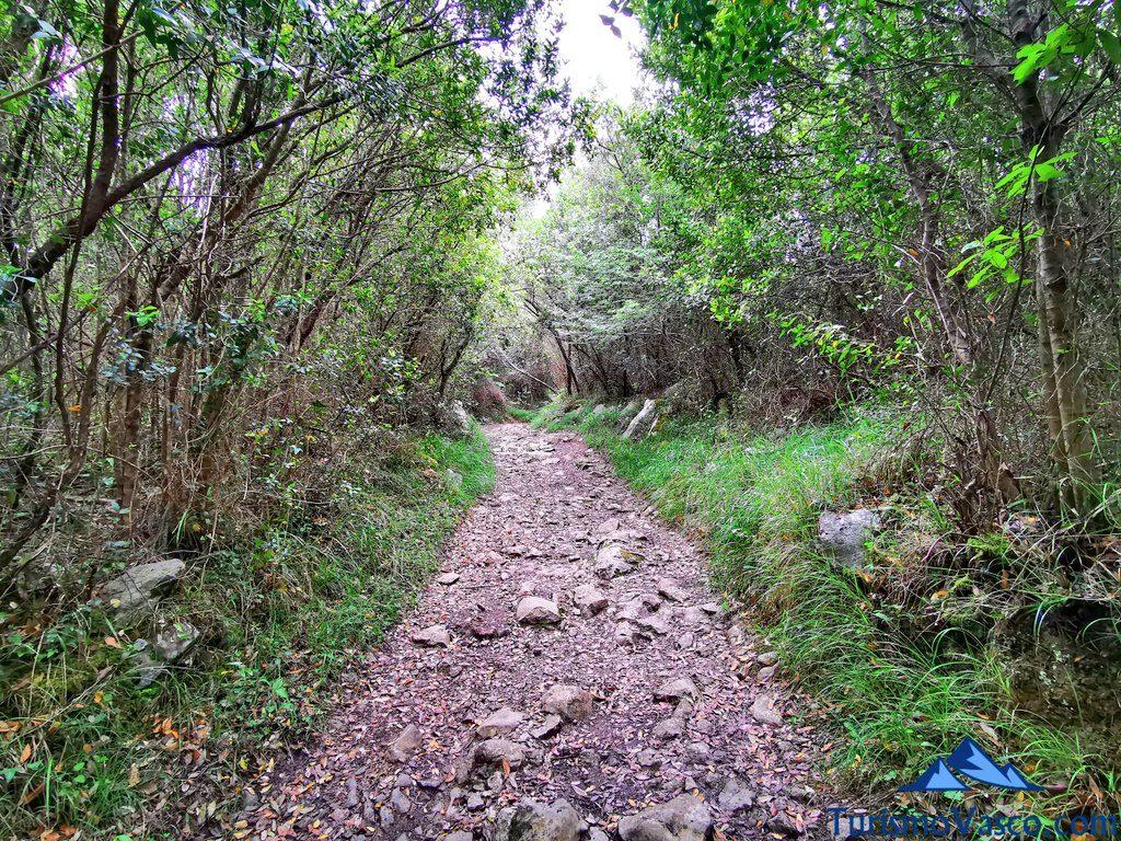 subida con piedras, San Pedro Atxarre ruta Urdaibai