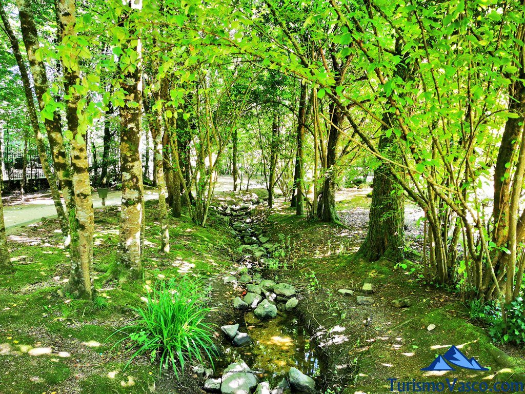 arroyo, baños de bosque en Euskadi