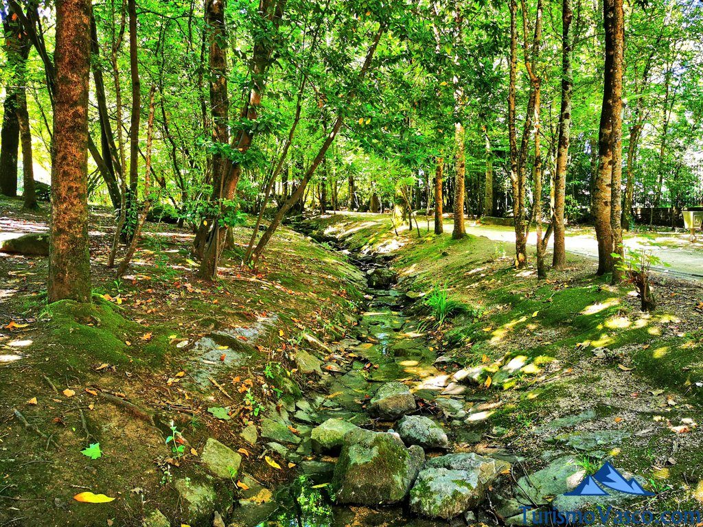 rio, baños de bosque en Euskadi