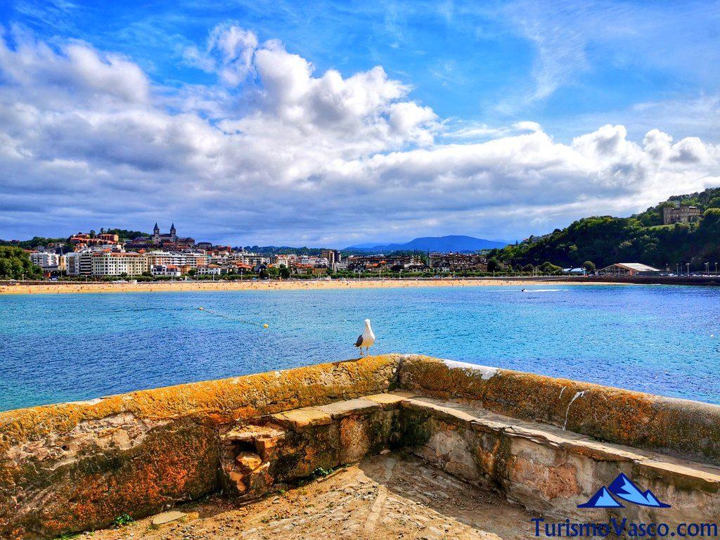 vistas desde la isla santa clara, isla de donostia san sebastian