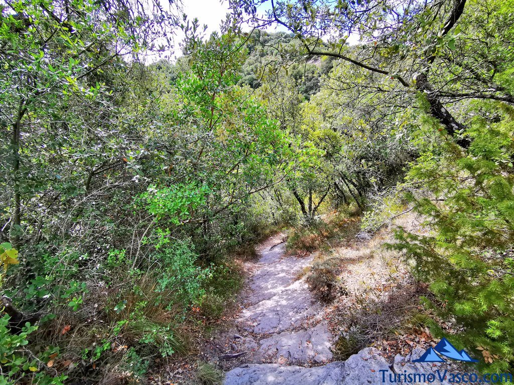 acceso a la cueva,ruta cueva de Los Goros