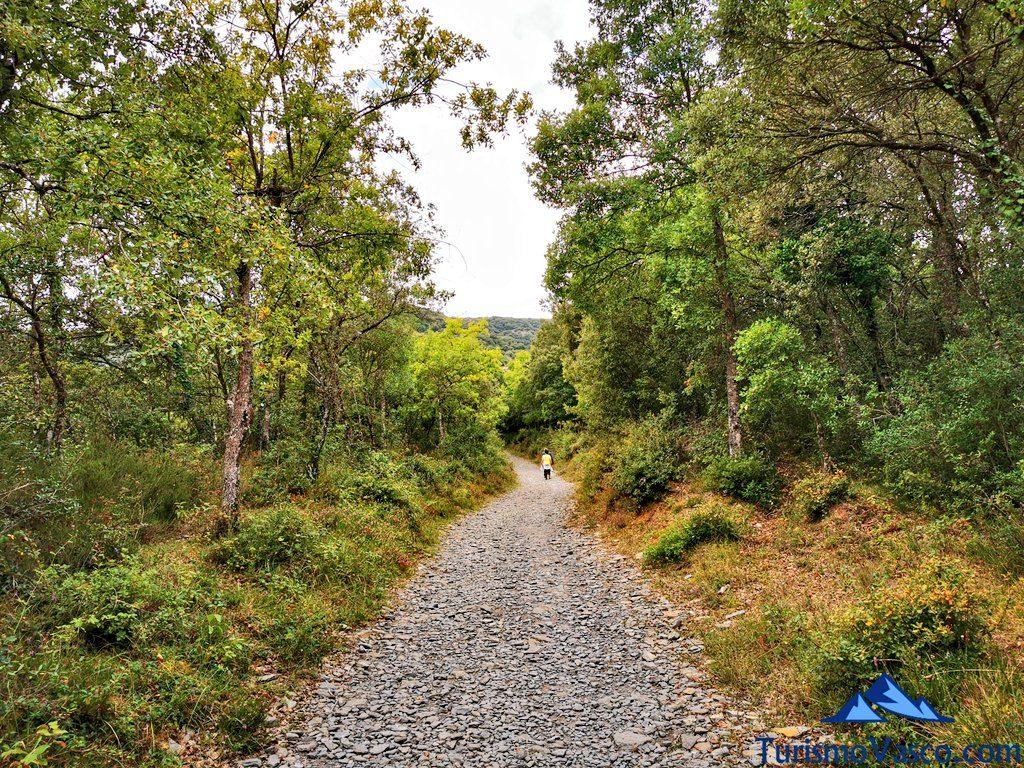 camino,ruta cueva de Los Goros