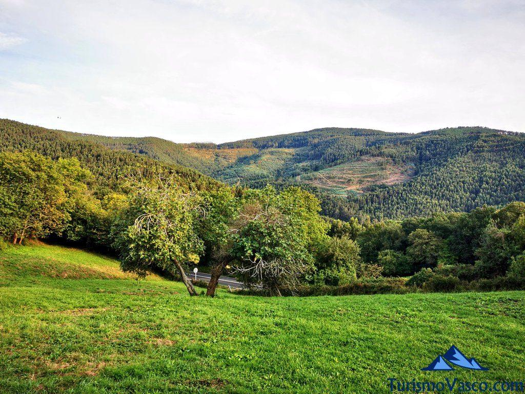 naturaleza en Bakio, vistas desde la ermita san pelaio, Bakio que ver y hacer