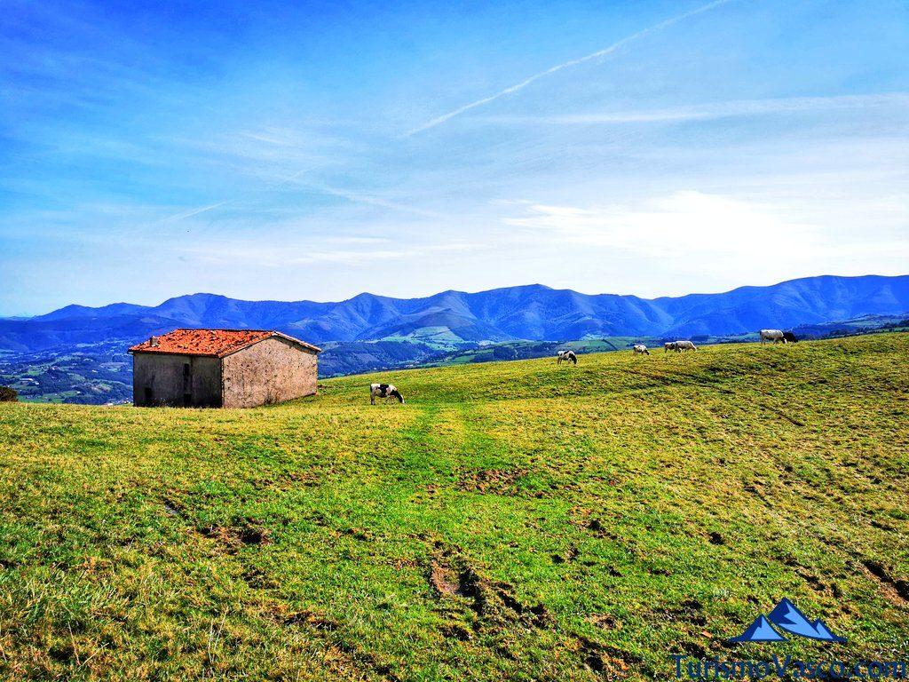 cabaña de ganado en karrantza, Ventana Relux Karrantza