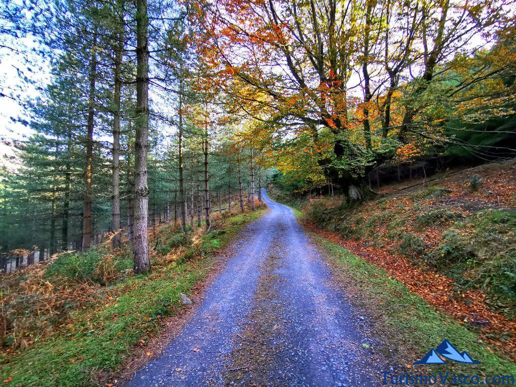 pista a belaustegi, Cascada de Belaustegi hayedo Orozko