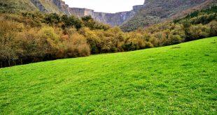 senda verde de delika, caños de delika