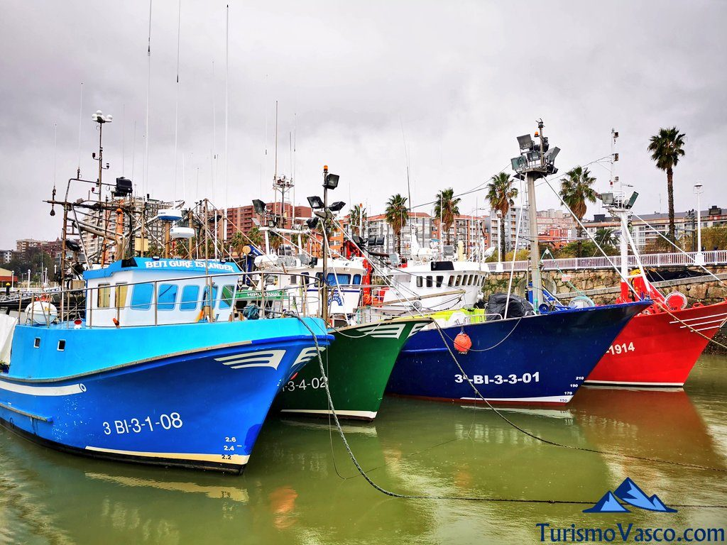 barcos pesqueros amarrados en santurtzi, que ver en santurtzi