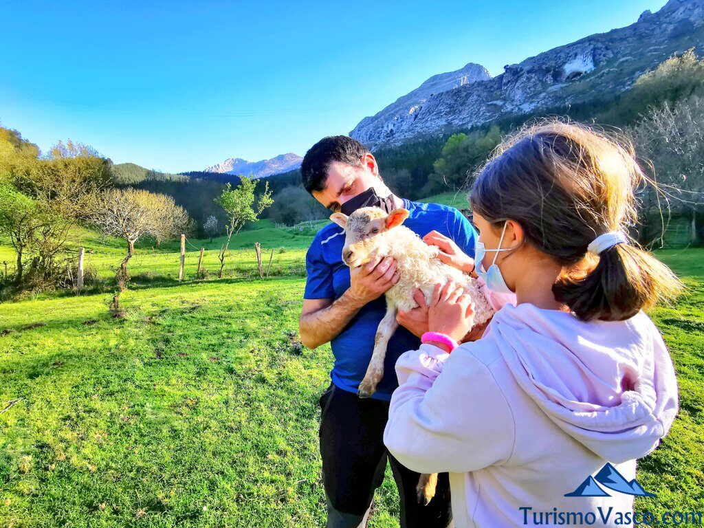 familia acariciando cordero, pastor por un día en Euskadi