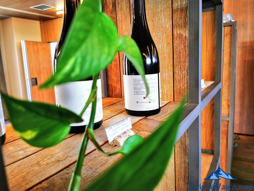 estanterias de vino, visita guiada a la bodega Lozano, visitas guiadas a bodegas de Rioja Alavesa