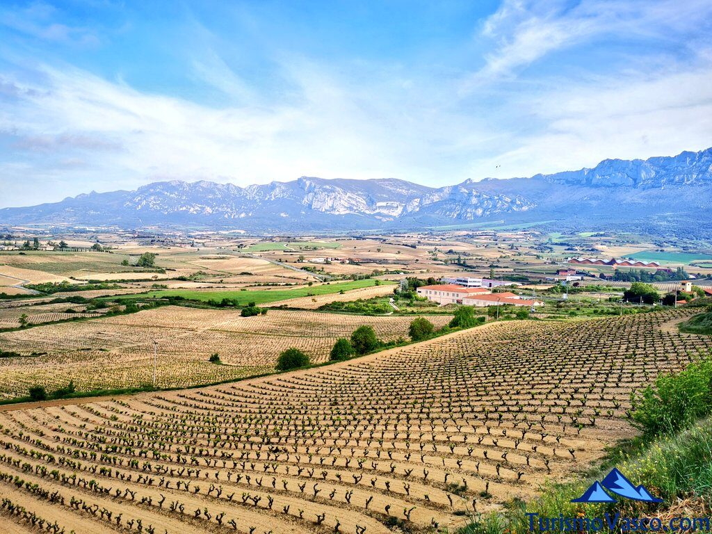 paisajes de rioja alavesa, que ver en Rioja Alavesa, araba