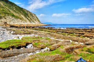 playa de azkorri de getxo, azkorri una playa con magnetismo, ruta guiada en el flysch de Bizkaia