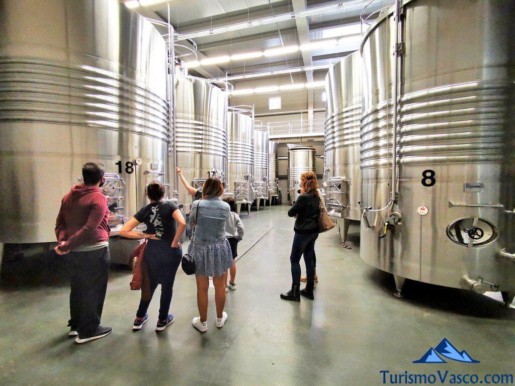 visita guiada en la bodega lozano, vendimia en Rioja Alavesa, bodegas de Rioja Alavesa